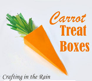 Carrot Treat Boxes