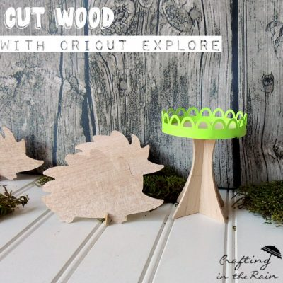 Wood Hedgehog Place Cards and Cupcake Stand