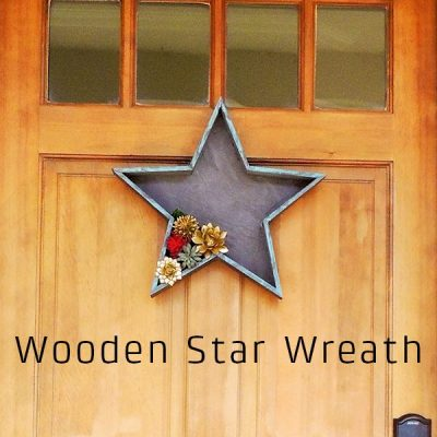 Star Shaped Succulent Wreath