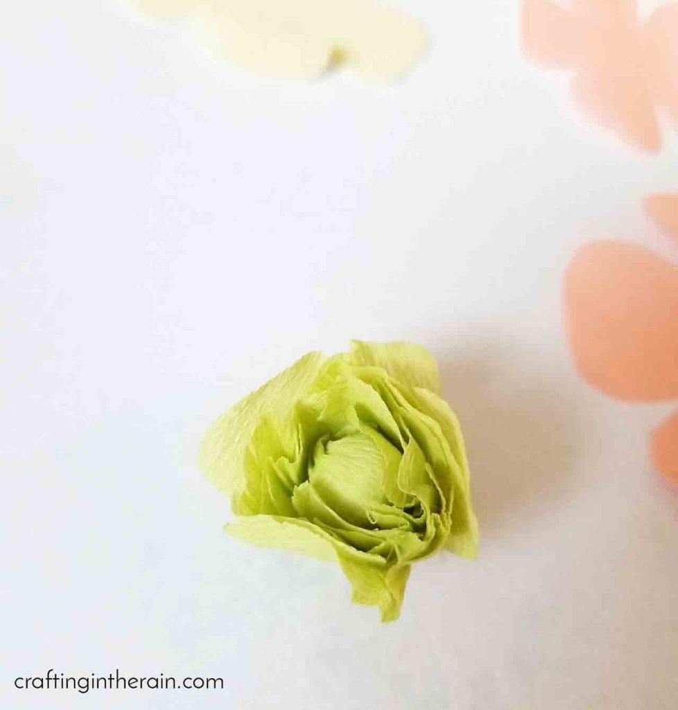 Crepe paper ranunculus