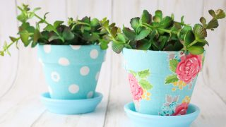 Fabric Plant Pots Using Mod Podge Ultra