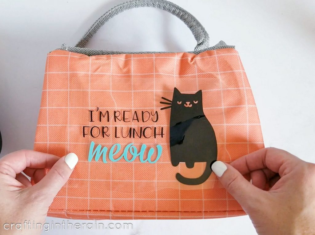 Funny cat lunch box