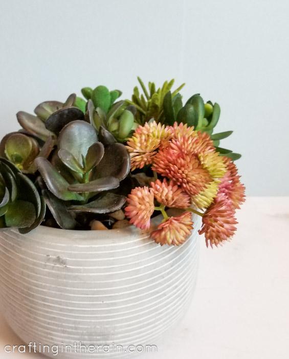 Succulent planter in cement