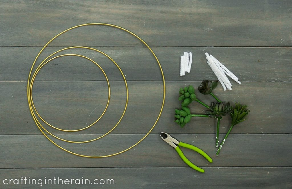 supplies for succulent wreath
