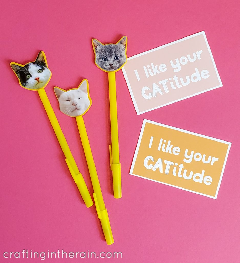 Cat pens with valentines