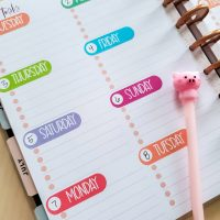 Day of the Week Planner Stickers
